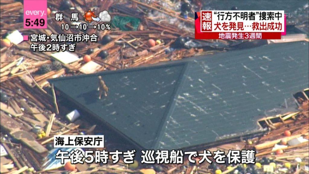 Tohoku Earthquake from Osaka