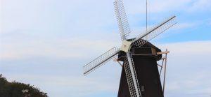 Japanese windmill Japanese - English Translation Competitions 2021